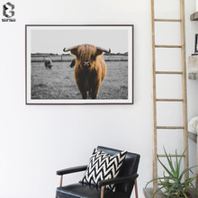 Nordic Decoration Wall Art Cattle Canvas Painting Animal Picture Poster Prints Highlands Cow Home Decor Dropshopping