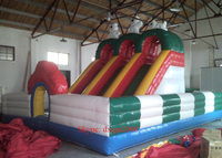 2016 Large PVC Inflatable Amusement Park And Inflatable Slide Outdoor Playground Combind Slide