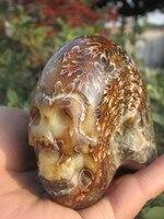 799 g Natural conch carving skull+base