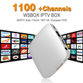 Iptv 1100+ Europe French Arabic IPTV Channels Stream Android Box Stream Sever Stalker Middleware Better than Mag250 Mag254 IPTV