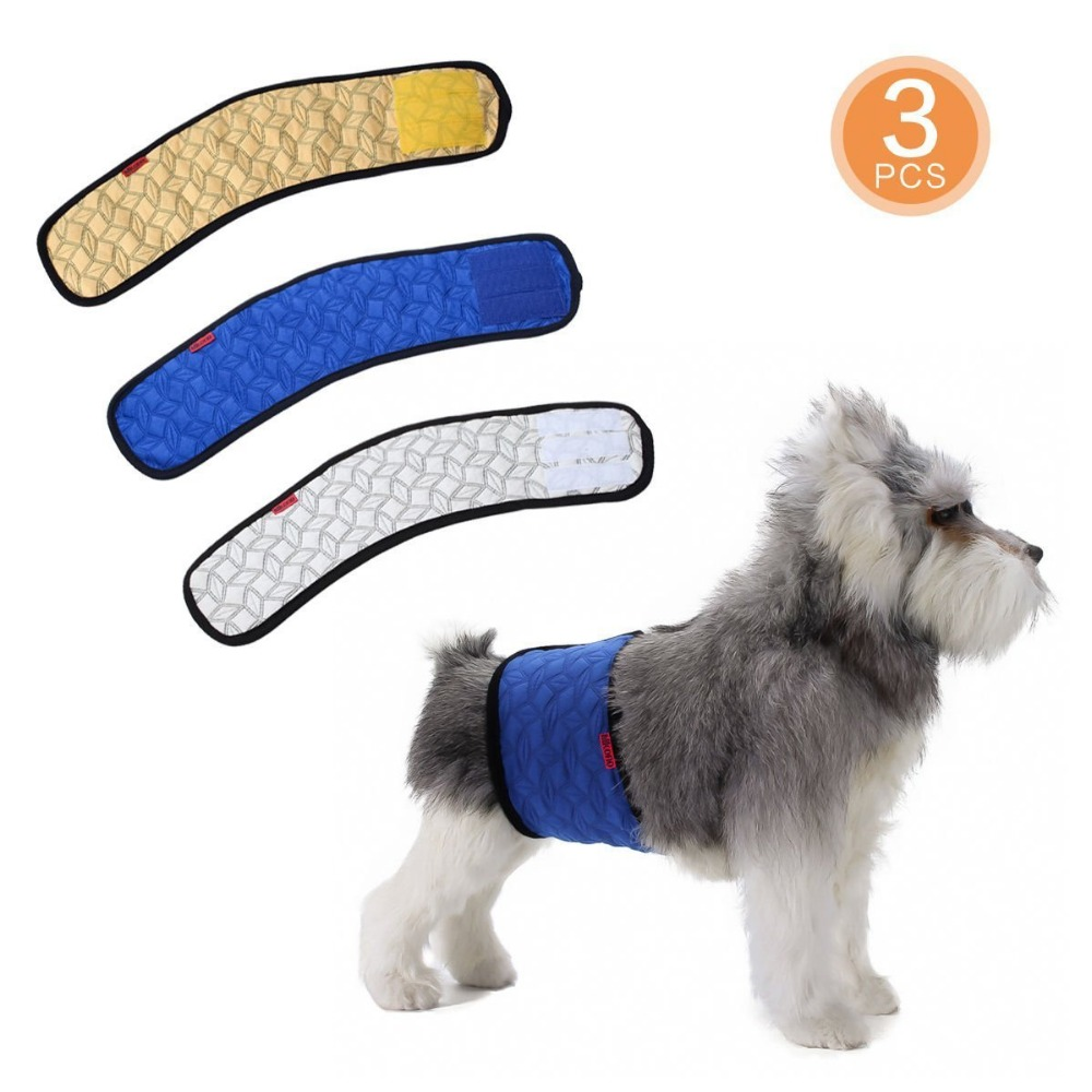 male dog wrap belly band