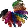 Розничная продажа 24 шт. 4-8 см редкий драгоценный вечерние декоративная многоцветная фазанье перо натуральных перьев для домашнего декора IF12 - фото