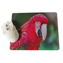 Yinuoda Parrot Large Mouse pad PC Computer mat Size for 18x22x0.2cm Gaming Mousepads