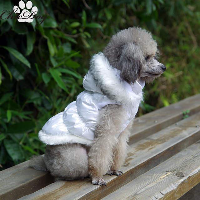 Gorący sprzedawanie kurtka dla psa pet ubrania Zimowe tanie
