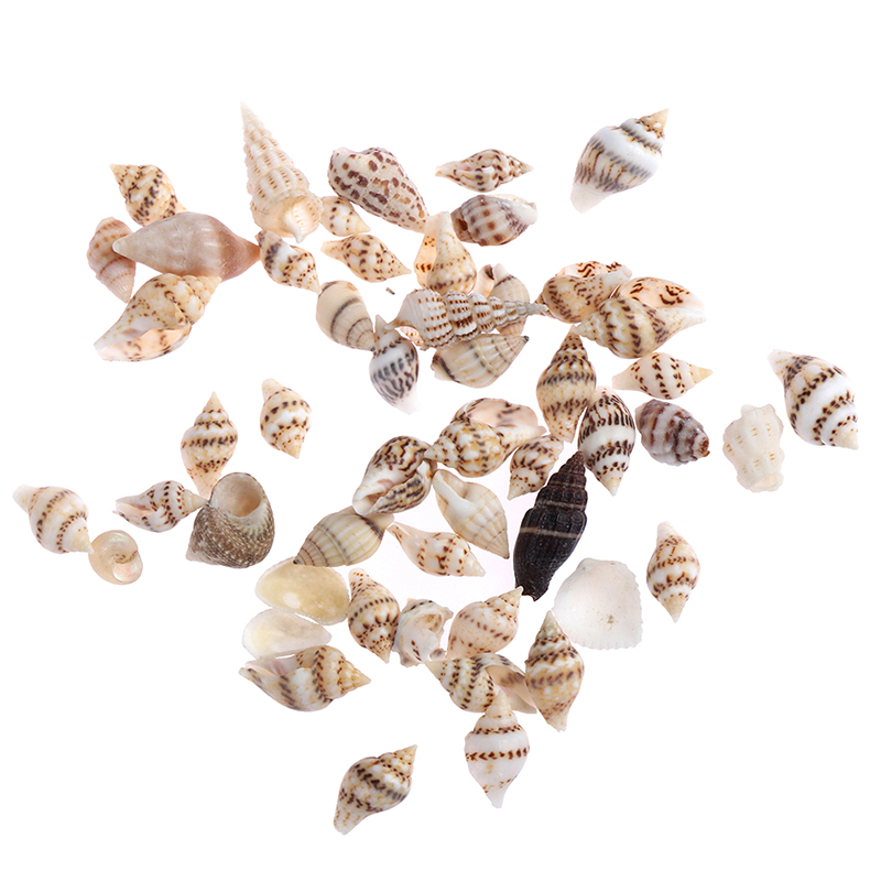 Cheap Sales 50% about 50pcs Tireless 1 Bag Mini Beach Shell Model Conch Simulation Toys For Doll House Decoration 1/12 Dollhouse Miniature Accessories