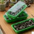 Envío libre, 3 unids 10 hoyos bandeja de vivero 30 unids 38mm bloque santiamén, ponga las semillas, bonsai, flores. bandeja de plántulas de vivero de plástico, crecen plantar
