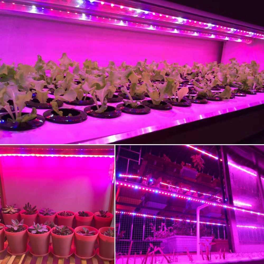 Full Spectrum Plant Grow LED Strip light 5050 12V Indoor Plant Grow lamp For Greenhouse Hydroponic Plants Vegetables Flower