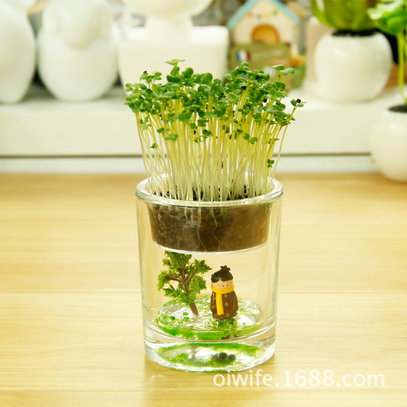 Micro Garden Ideas stackable vertical gardens can be any design or material just use your imagination Aliexpresscom Buy Eco E Garden Fairy Cup Office Desktop Micro Potted Landscape Ecology Bottle Glass Gift Ideas Customized Pot From Reliable Pot Clothes