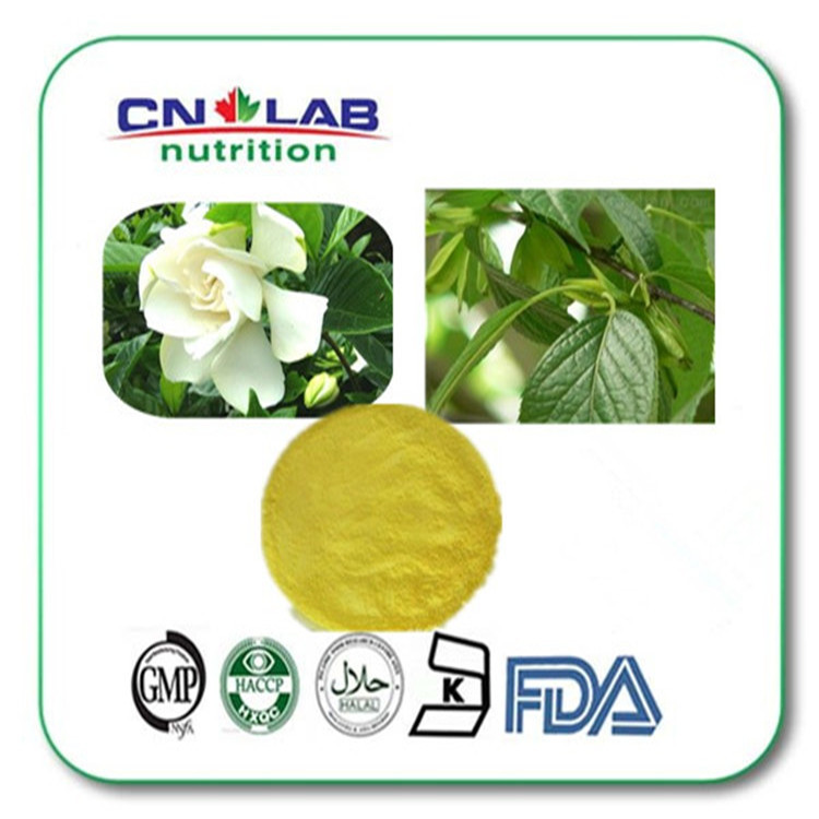 Extract from bud of sophora japonica HPLC95%/UV98% Quercetin GMP Manufacture 95% Rutin and Quercetin hot sale pure plant extract quercetin dihydrate 95