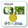 Extract from bud of sophora japonica HPLC95%/UV98% Quercetin GMP Manufacture 95% Rutin and Quercetin