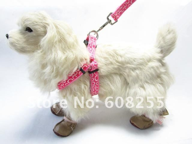 Free shipping! Wholesale 10pcs/lot nylon pet harness& leash, dog harness& leash(size S: 1.0X120cm),pet products dog leash
