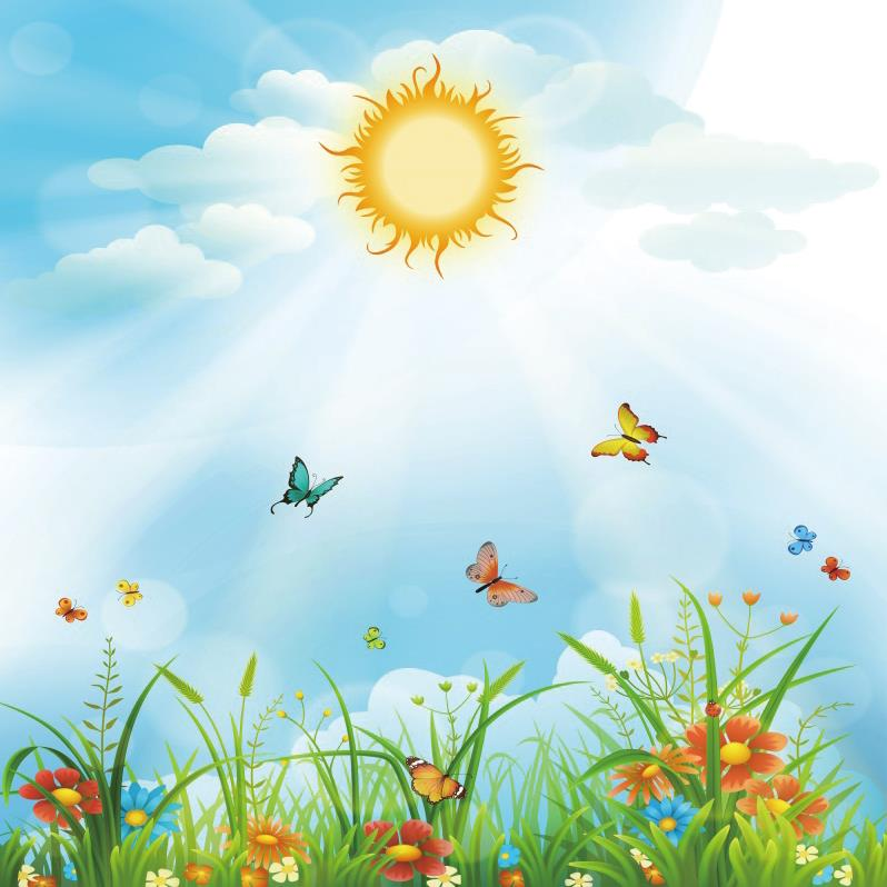 Spring Pictures: Laeacco Kids Backdrops Baby Cartoon Sun Grass Butterfly