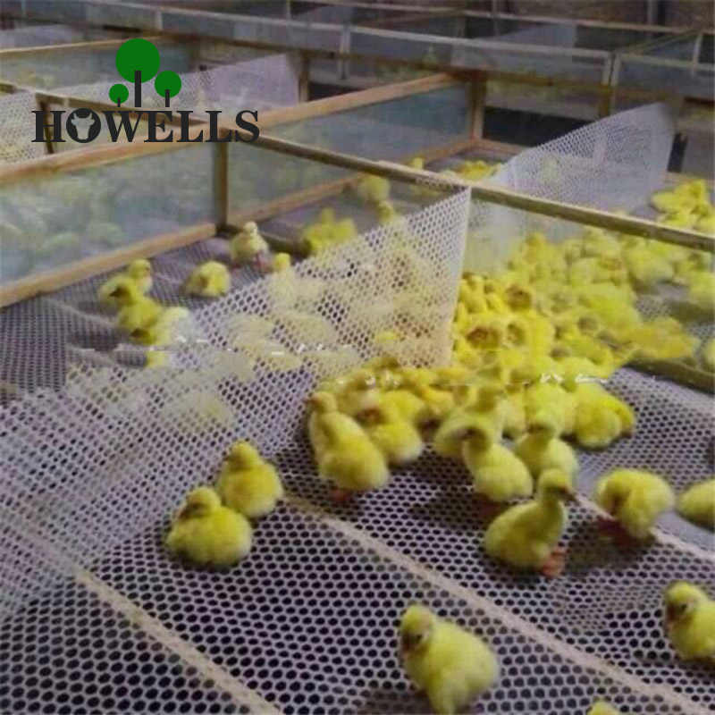 Chicken Cage Pad Feet Defoaming Board Plastic Net Breed Poultry Chickens Leakage Fecal Network Plastic Mesh