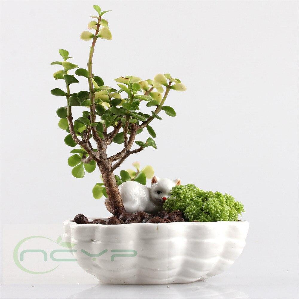 Online buy wholesale pottery flower pots from china pottery flower pots wholesalers for Decoration jardin pot