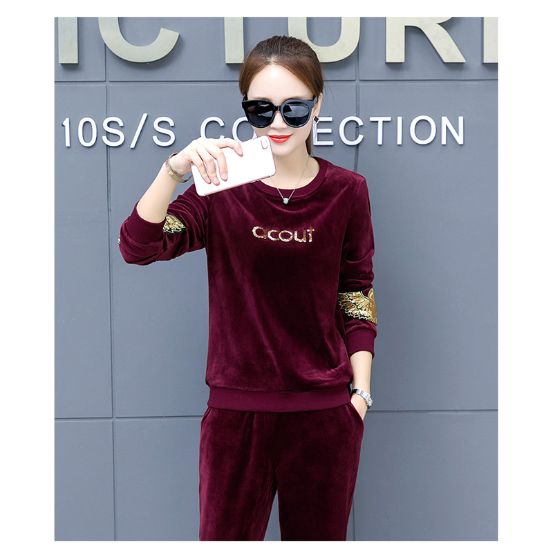 Pleuche Outfits Set O Neck Tops and Sweat Pants Set Spring Autumn Tracksuit Womens Two Piece Sets M-3XL