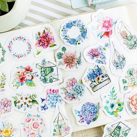 20 caixas lote nova linguagem da flor