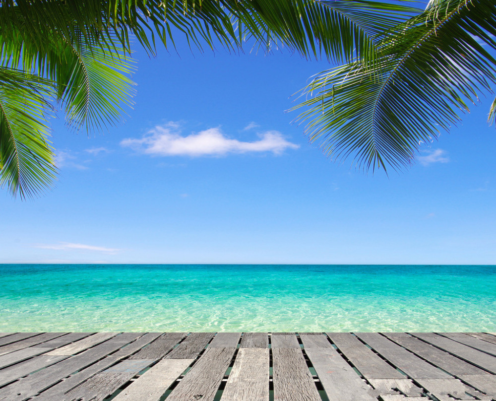 Aliexpress.com : Buy SHENGYONGBAO Beach Theme Vinyl