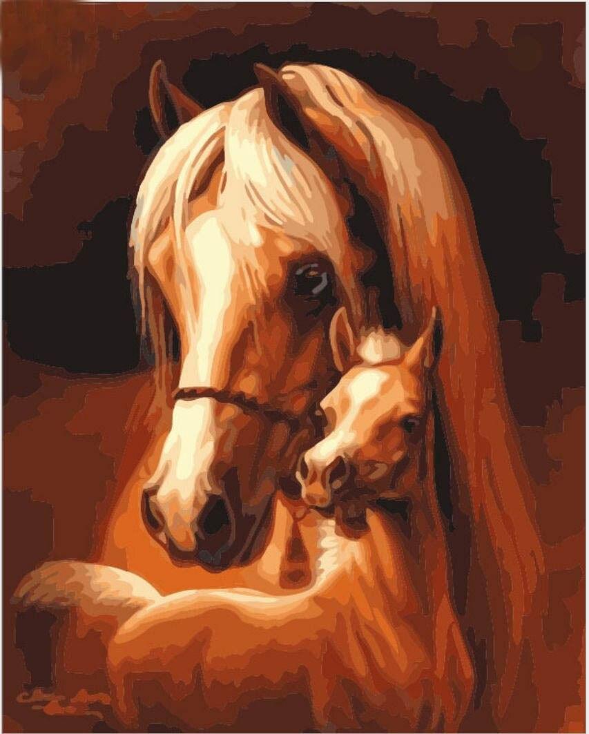 Enmarcado pintura dibujo pintura por números caballo pintura al óleo ...
