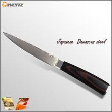 Sharp damaskus messer Japanischen Aus-10 damaststahl küchenmesser farbe holzgriff 5 zoll universalmesser beste kochen werkzeuge