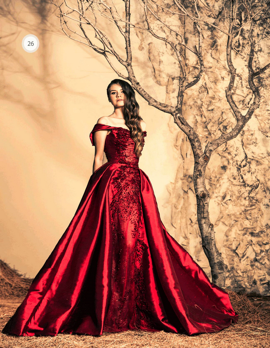 Ziad Nakad Haute Couture Rze26 Evening Formal Party Ball Gown Women Dress Beading Red Long 2017 In Dresses From Weddings Events On