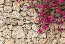 Laeacco Belas Flores Retrato Da Parede De Pedra Grunge Backdrops Para Estúdio de Fotografia Fotografia Fundos Fotográficos Personalizados