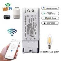 Wifi DIY interruptor de atenuación Control voz módulo remoto inalámbrico  inteligente hogar automatización luces interruptores funciona con Alexa