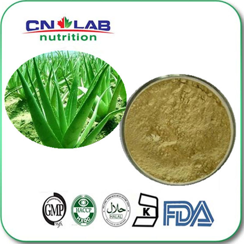 4:1 organic pure Aloe Vera plant Extract Powder Best Sale Aloe Vera Extract , Aloe Emodin 98% Aloe Emodin 20g pure horny goat weed epimedium extract powder 98% icariin male health man sex pproducts