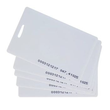 Hole punched CR80 standard size plastic blank white tag cards