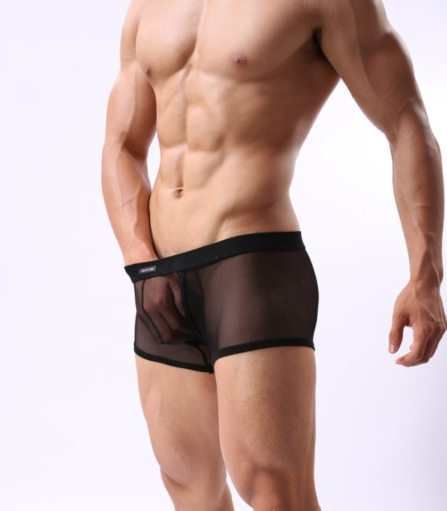 Free Shipping Famous Brand Transparent Underwear Men's Boxers ...