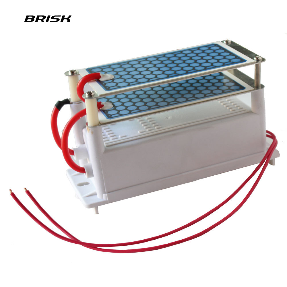 Brisk Portable Ceramic Ozone Generator Double Integrated Ceramic Plate Ozonizer Air Water Air Purifier Parts 220V/110V 10g  02 m312 mitsubishi new style mv ceramic lower isolator plate x085c130g51 117 106 t20mm edm wear parts