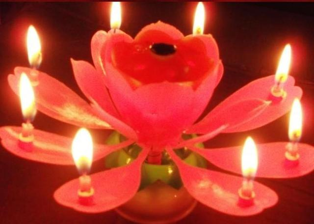 5 Pcs Lot Birthday Party Music Sparkle Cake Candle Beautiful Blossom Lotus Flower