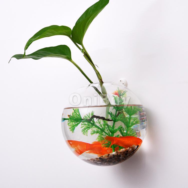 Clear Ball Hanging Glass Flower Vase Succulent Plant Bottle Home