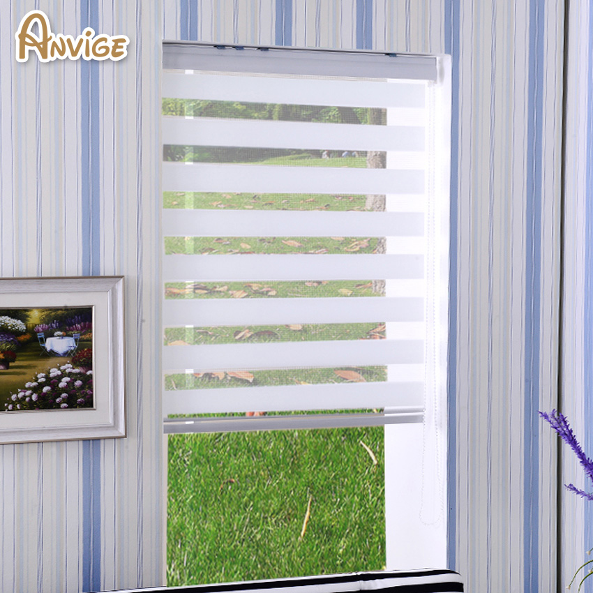 Hot Sale White Color Window Treatment Zebra Blinds Double Layer Roller Blinds For Room Window Customized