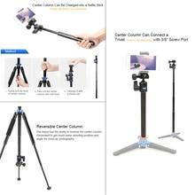 DHL Benro tripods IS05 reflexed Self lever travel light tripod SLR digital camera portable handset head wholesale