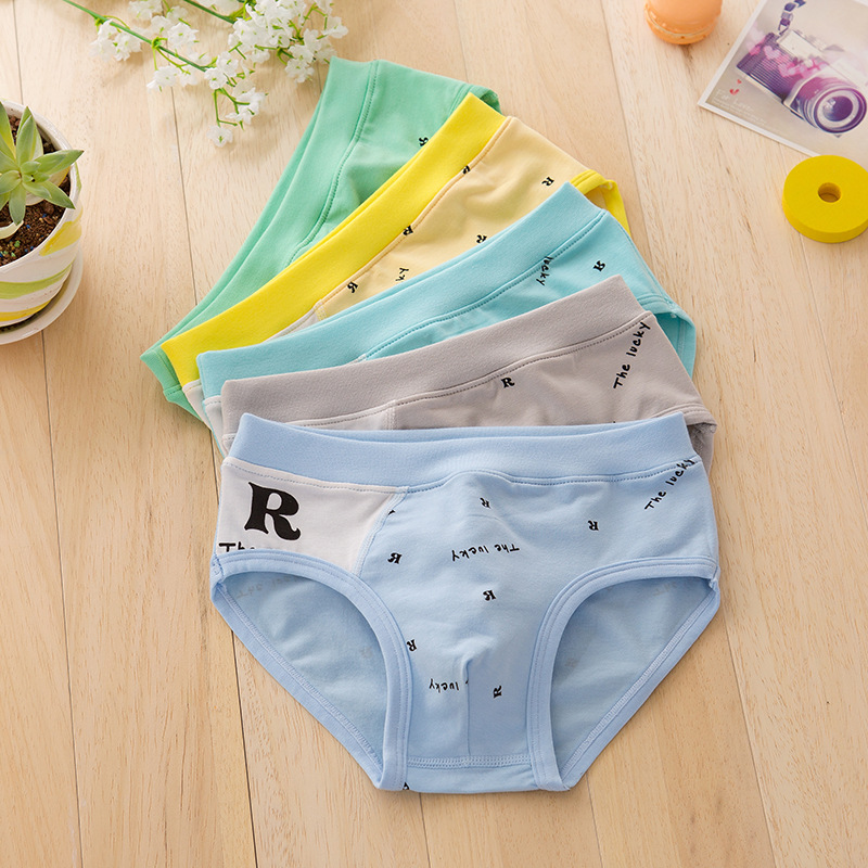 2018 new arrived free shipping high quality boys teenager cotton <font><b>briefs</b></font> panties kids children underwear 2-9years 5pcs/lot