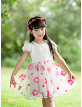 Vestidos Infantis Special Offer Minnie Baby 2015 New Arrival Girl Dress Costume Party Dresses Kids Clothes