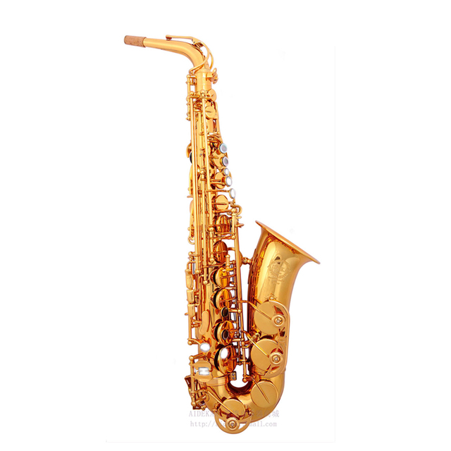 Cheap VECKY-600 alto saxophone gold lacquer engraved Professional playing Exercise examination design from SELMER alto saxophone 802