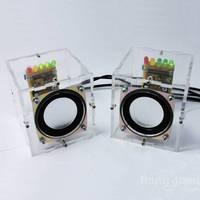 מפעל סיטונאי משלוח חינם DIY ערכת לימוד אלקטרוני ערכת מיני מגבר רמקול רמקול שקוף