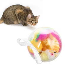 Pet Cats Toys Set Gift Transparent Ball Package Kittens Sisal Mice Spring Funny Playing 7 Pieces