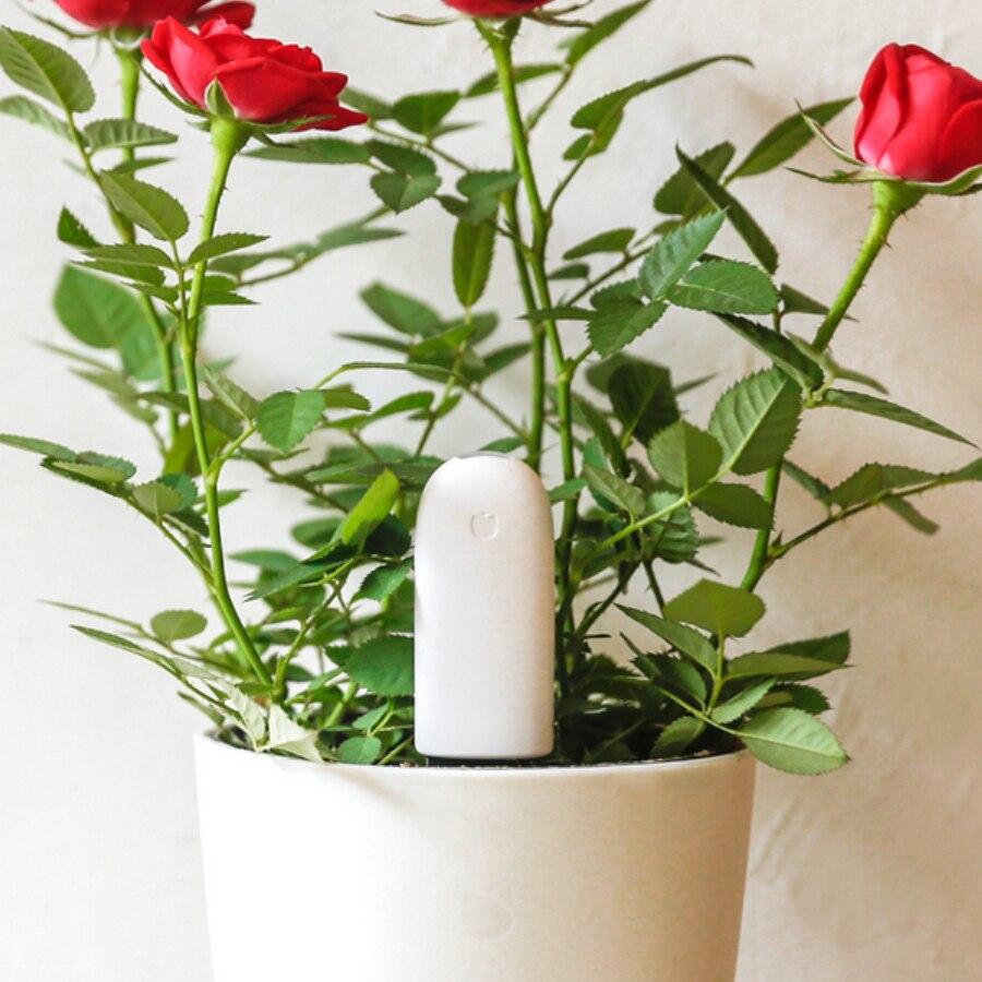 imágenes para Versión internacional Original Xiaomi mi Monitor de Flora Flores cuidado Inteligente Luz Del Probador Del Sensor de Agua Del Suelo para la Planta de Jardín