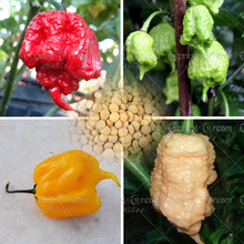 лучшая цена 200Pcs Carolina Reaper Pepper Plant Capsicum Chinense The Worlds Hottest Chilli Pepper Plant Bonsai Vegetable Plant Home Garden