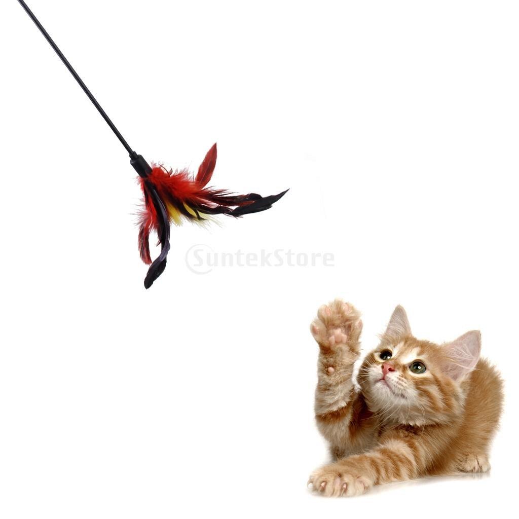 ᗑColorido teaser roped Plumas varilla gato gatito mascota juguete ...