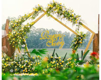 New Wedding Wrought Iron Backdrop Stand Geometry Pentagon Road Lead Metal Arch Flowers Shelf For Wedding Party Decoration