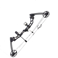 Профессиональный соединение лук 20 70 фунтов Регулируемый нарисовать Вес Алюминий сплав охотничий лук со стрелками Открытый Охота стрельба
