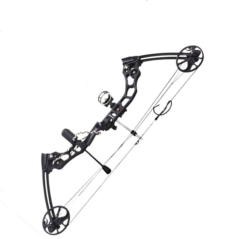 Professional Compound Bow 20-70 lbs Adjustable Draw Weight Aluminum Alloy Hunting Bow Arrow Outdoor Hunting Shooting junxing compound bow for hunting archery bow right hand 50 60 lbs draw weight outdoor shooting athletics bows arrow set