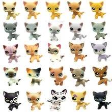 Lps pet shop gato brinquedos bonito de cabelo curto gato clássico raro conjunto completo de pet cat cosplay ação modelo figura crianças presente natal