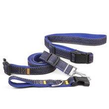 Handsfree Dog Leash And Collar