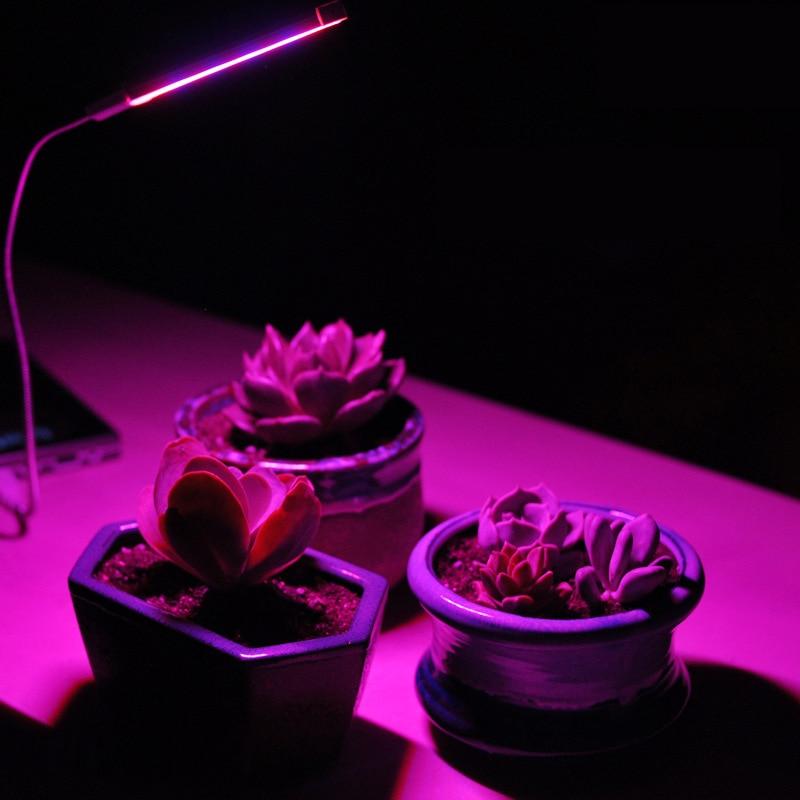 LED Grow Light Lamp USB LED Plant Growth Light for Indoor or Desktop Plants ...