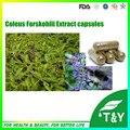 Forskolina Coleus Forskohlii Extracto de Calidad GMP Cápsulas 500 mg * 200 unids