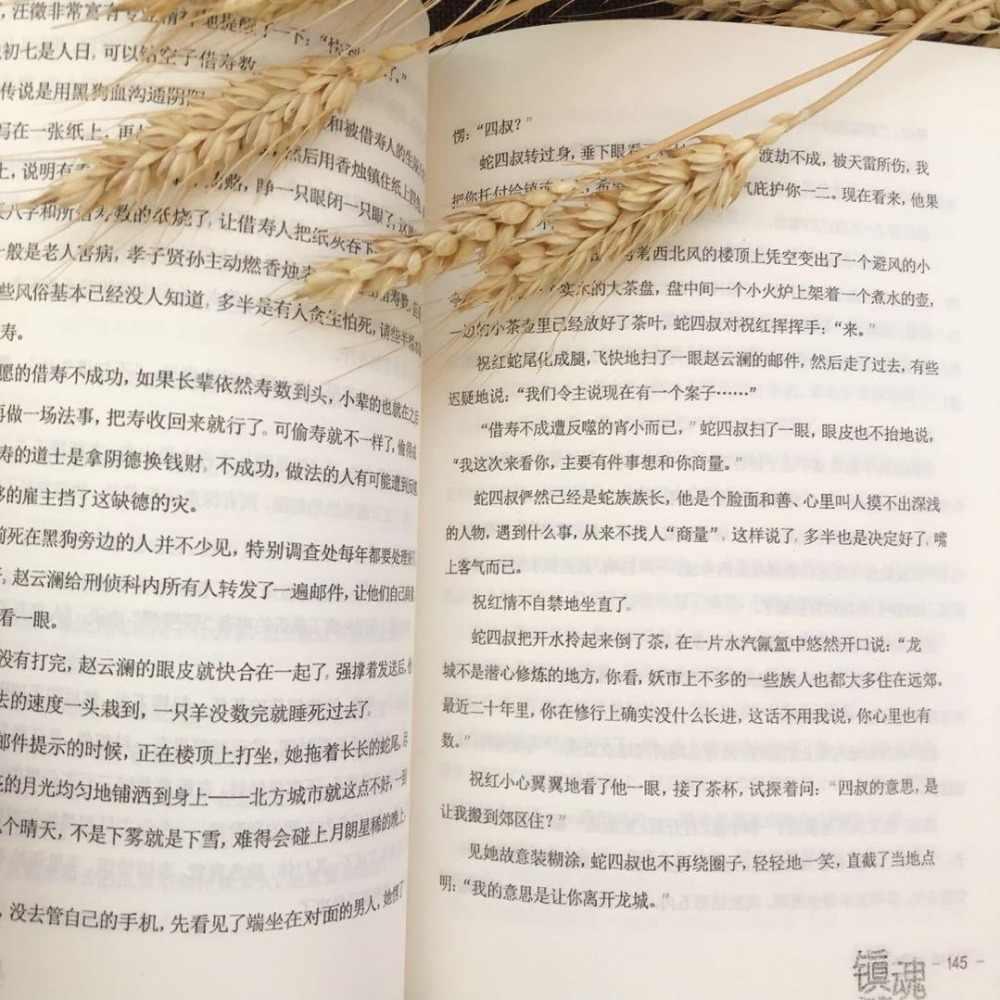 2 Books Zhen Hun Guardian By Priest Chinese Novel Fiction Book China TV  Drama Program Novel Zhu Yi Long Actor